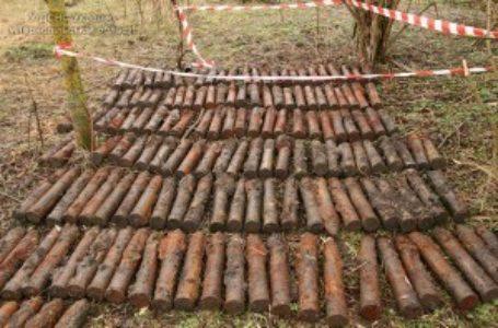 На Тернопільщині знешкодили майже півсотні боєприпасів