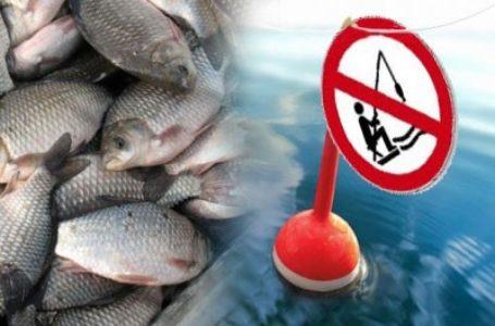 Півсотні водних об'єктів Тернопільщини з листопада закриті для рибалок