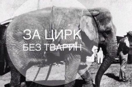 Тернополяни голосують за заборону пересувних цирків з тваринами