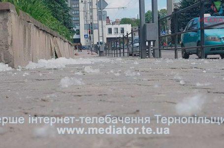 У  Тернополі через пух з дерев страждають алергіки (Відео)