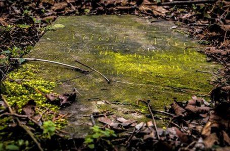 Біля Тернополя знайшли могилу закоханих, похованих заживо