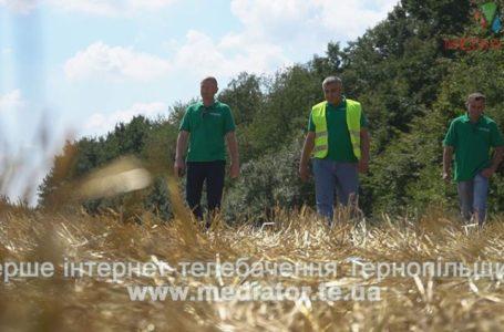 """""""Щоб негаразди обминали кожну українську сім'ю"""", – працівники Агрохолдингу про Незалежності та мрії"""