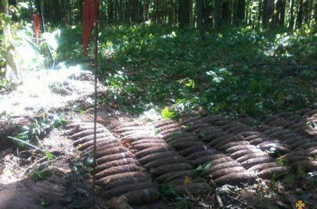 На Шумщині посеред лісосмуги знайшли 350 боєприпасів