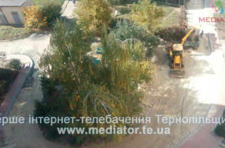 На Стадникової відновили призупинений ремонт дороги (Відео)