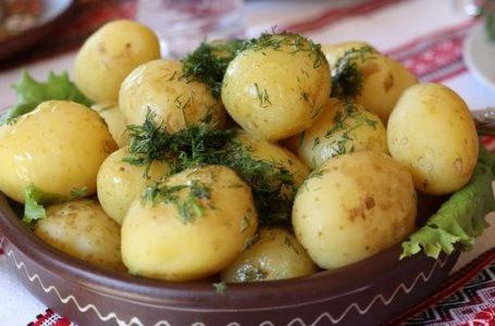 Жителям Тернопільщини радять робити запаси картоплі