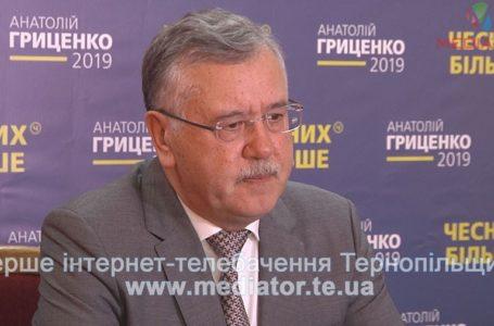Україна — не Росія: українці самі обирають президента і закордоном це усвідомлюють, – Анатолій Гриценко (Відео)