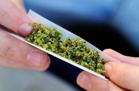 Хлопців з марихуаною впіймали тернопільські патрульні