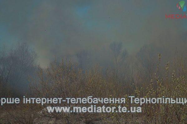 На Тернопільщині за день погасили тридцять пожеж
