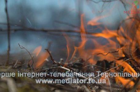 На Тернопільщині трапилося півтисячі пожеж через підпали трави