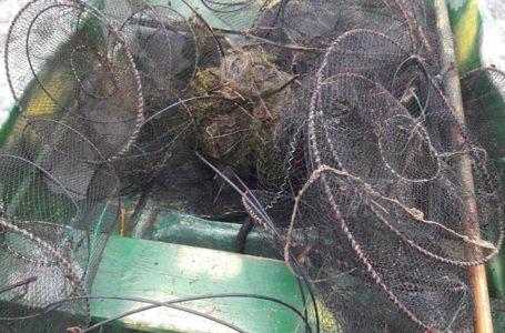 На Тернопільщині браконьєри виловили риби на півмільйона