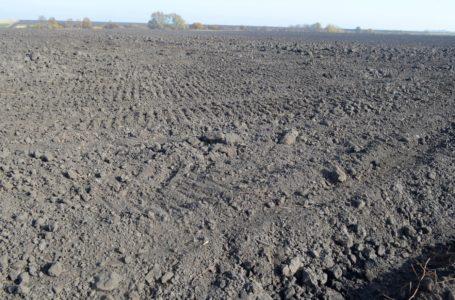 На Теребовлянщині сільгосппідприємство самовільно зайняло 57 га землі