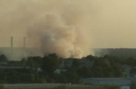 У Тернополі на вул. Микулинецькій масштабна пожежа: горить сміття  (Фото)