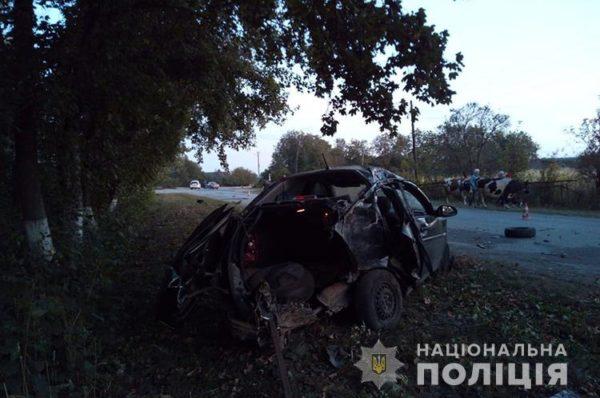 У Борщівському районі водій іномарки спричинив ДТП: загинув пасажир (Фото)
