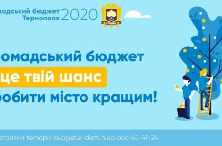 Громадський бюджет Тернополя: три проекти відхилили