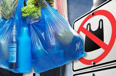 Верховна Рада підтримала заборону пластикових пакетів