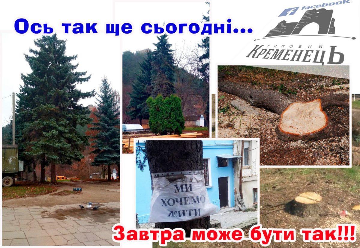 У Кременці протестують проти вирізки дерев