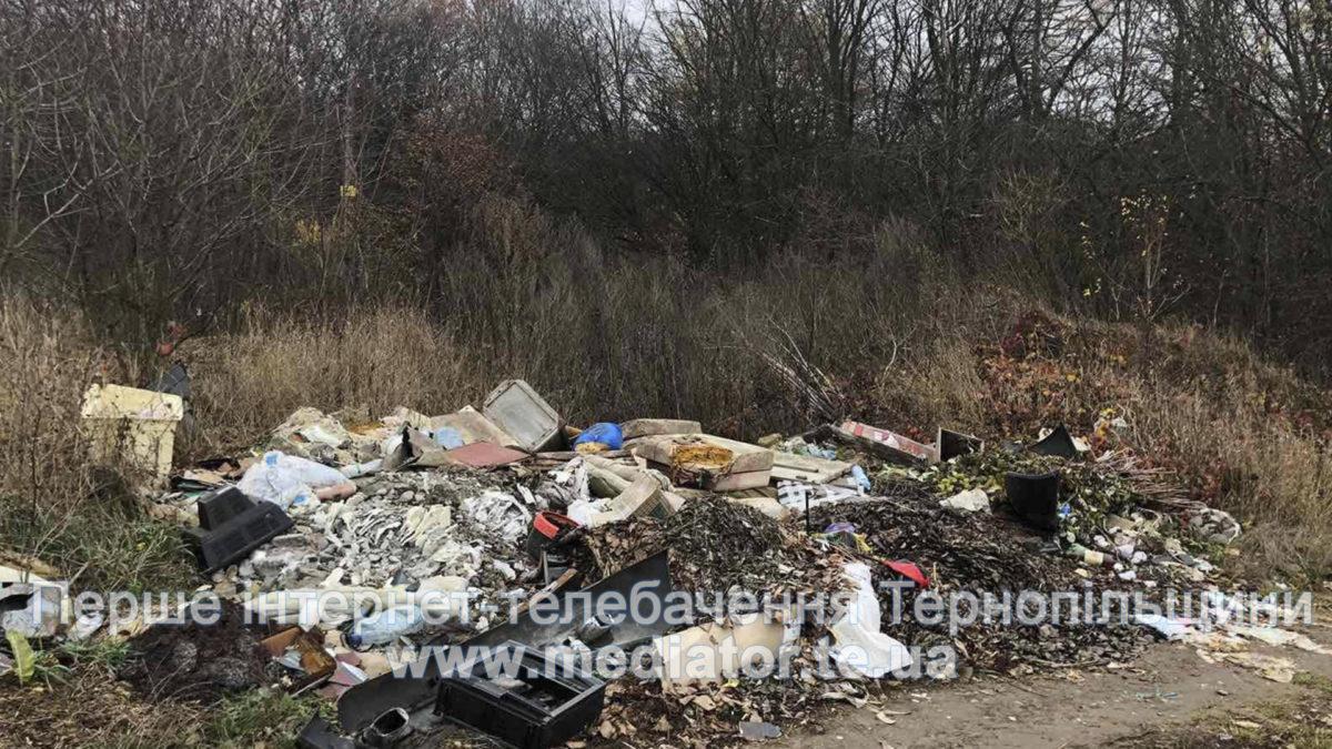 Вулиця в селі Петриків потопає у смітті (Фото)