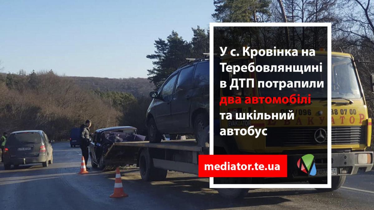 У ДТП зі шкільним автобусом на Тернопільщині є загиблий (Фото)