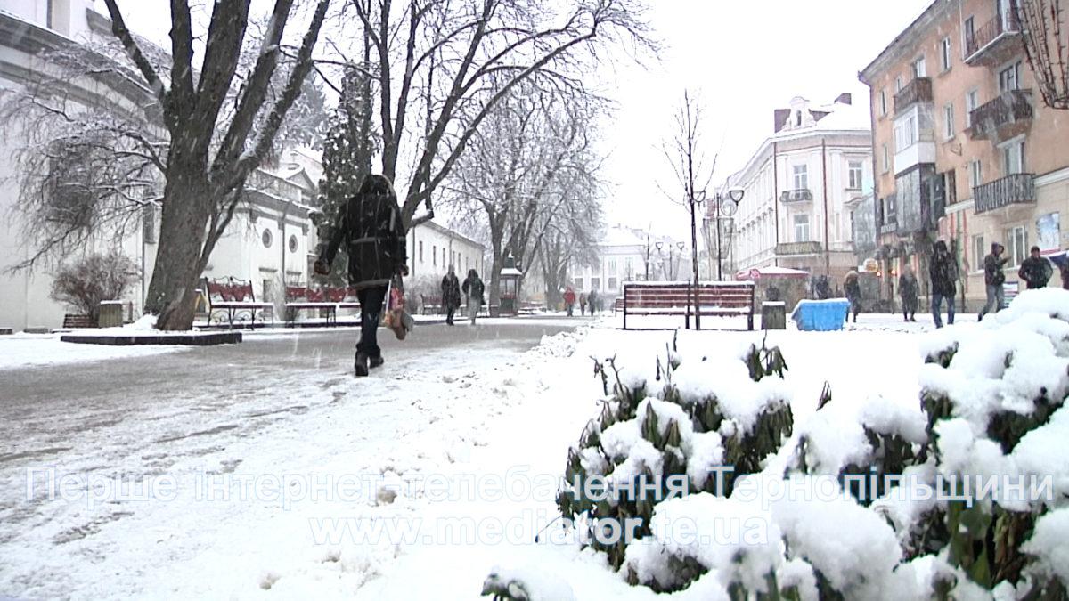 Мороз і хуртовина: про погіршення погодних умов попереджають тернопільські рятувальники