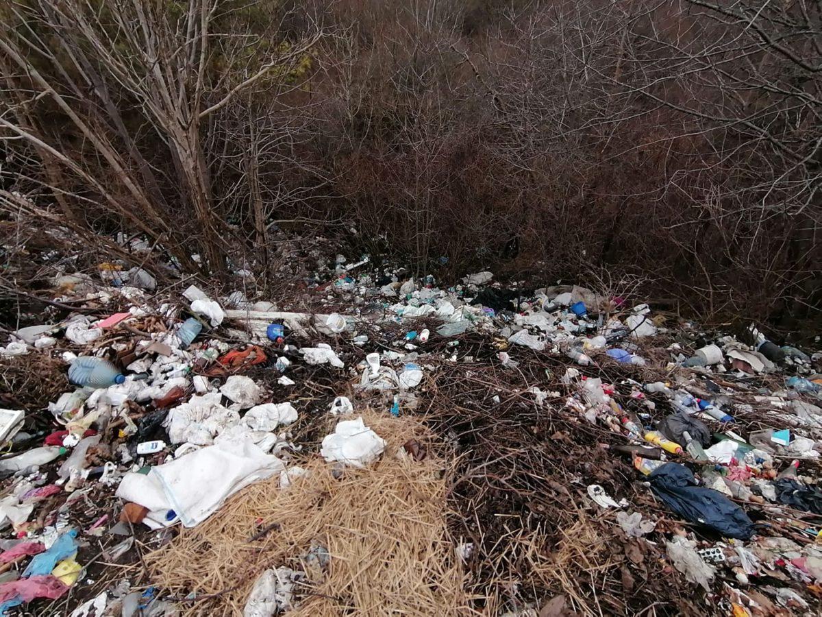 На Тернопільщині гори сміття люди вивозять до лісу (Відео)