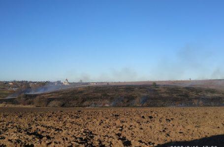 На Тернопільщині за добу гасили 25 пожеж сухої рослинності (Фото)