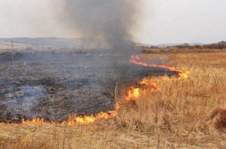 На Чортківщині, у пожежі трави, знайшли обгоріле тіло людини