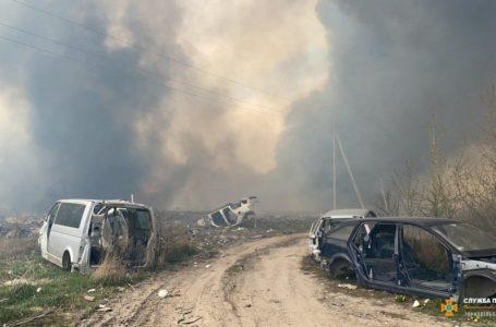 20 рятувальників та 15 місцевих жителів гасили очерет на Микулинецькій