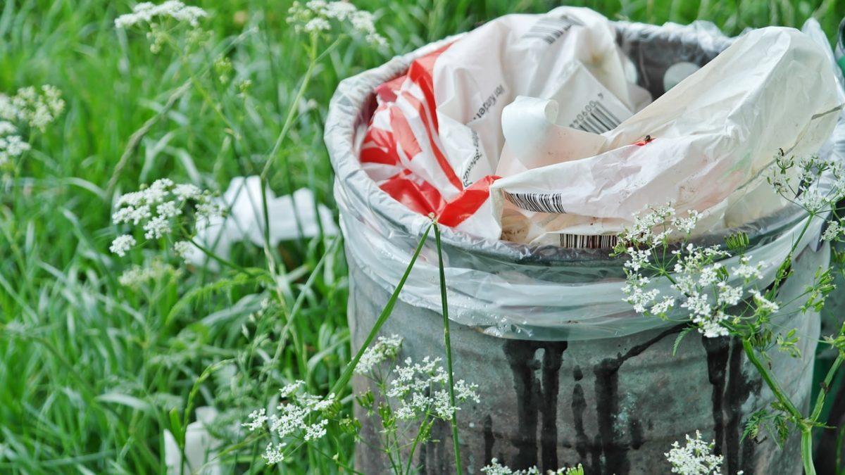 Під Тернополем впіймали чоловіка, який вивіз сміття до лісу (Відео)