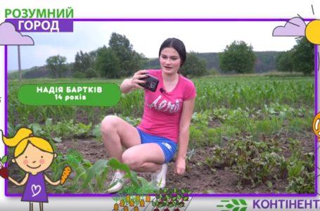 На Тернопільщині діти самотужки вирощують овочі й знімають про це відео. Блог 2