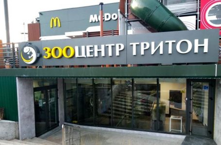 """Зооцентр """"Тритон"""" у Тернополі — розкішний простір для здорових і доглянутих тварин"""