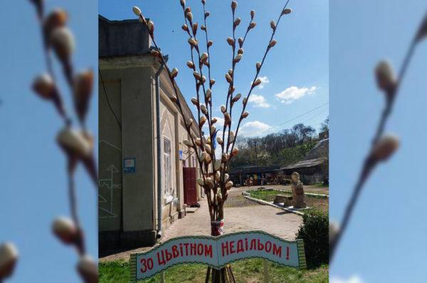 На Тернопільщині встановили триметрові вербові галузки (Фото)