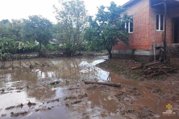 Через негоду на Тернопільщині затоплені десятки будинків і гектари угідь (Відео/Фото)