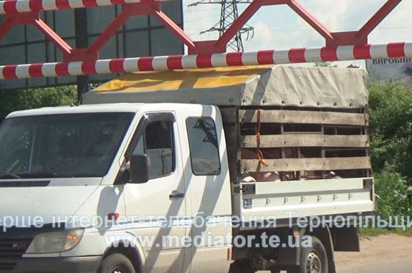 У Тернополі, попри заборону, Гаївським мостом курсують вантажівки (НАЖИВО)