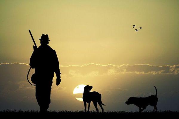 На Тернопільщині розпочався сезон полювання