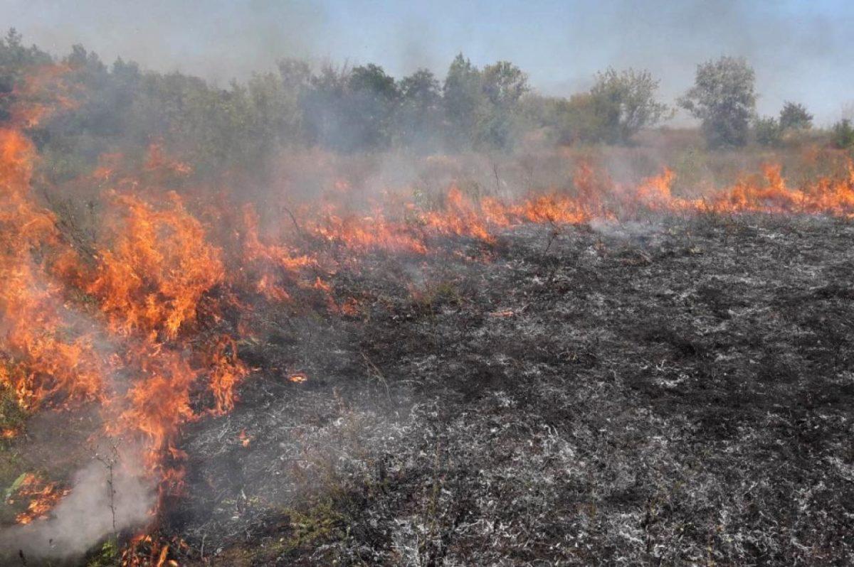 На Тернопільщині рятувальники тричі за добу гасили суху траву