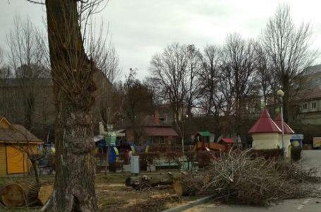 У парку Шевченка рубають дерева. Люди стурбовані (Фото)